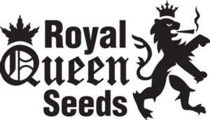 ganja seeds australia