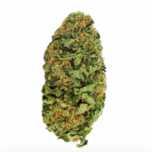 Northern Lights Cannabis Bud Australia