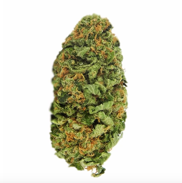 Northern Lights Cannabis Bud Australia