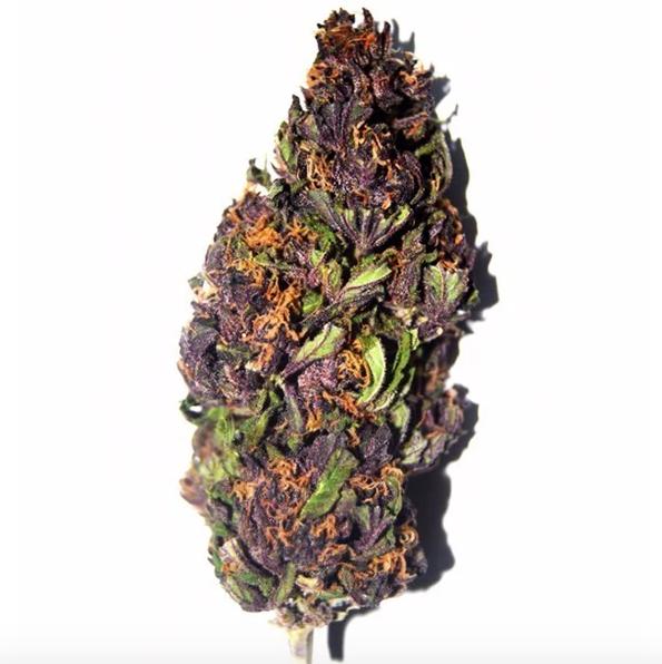 Purple Haze Bud Australia
