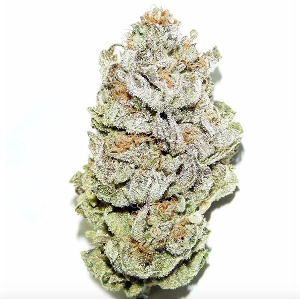 Super Silver Haze Bud