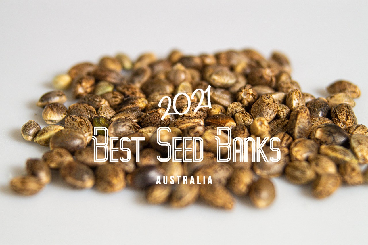 Best Cannabis Seed Banks Australia 2021